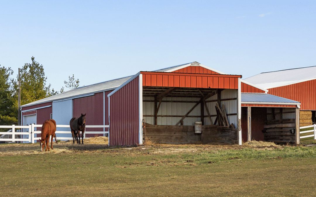 Do you understand everything you need to know about the pole barn?